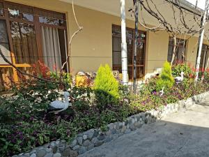U Norika i Susanny Guest House, Penziony – hostince  Alakhadzi - big - 24