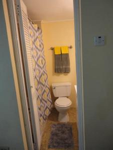 #45, Appartamenti  Kingston - big - 9