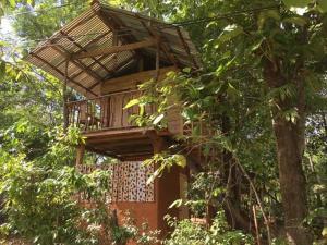 Angry Birds Tree house, Homestays  Habarana - big - 12
