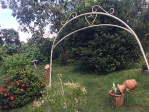 Le Gite Des Orquidees, Holiday homes  Bazin - big - 5