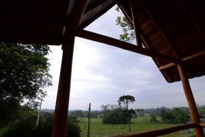 Casa na Árvore, Prázdninové domy  Santa Cruz do Sul - big - 10