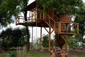 Casa na Árvore, Prázdninové domy  Santa Cruz do Sul - big - 12