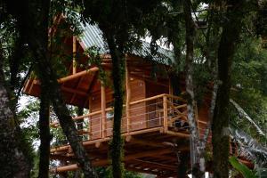 Casa na Árvore, Prázdninové domy  Santa Cruz do Sul - big - 13