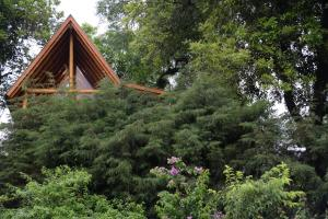 Casa na Árvore, Prázdninové domy  Santa Cruz do Sul - big - 14