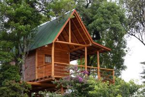 Casa na Árvore, Prázdninové domy  Santa Cruz do Sul - big - 15