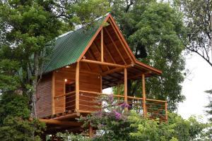 Casa na Árvore, Prázdninové domy  Santa Cruz do Sul - big - 1
