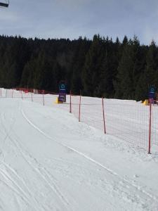 Hotel Adria Ski - фото 27