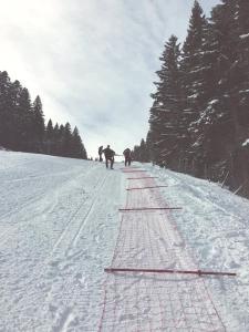 Hotel Adria Ski - фото 21