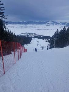 Hotel Adria Ski - фото 20
