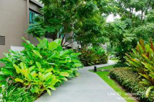Raincondo Pool Access, Appartamenti  Petchaburi - big - 31