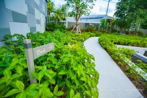 Raincondo Pool Access, Appartamenti  Petchaburi - big - 15