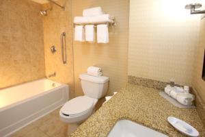 Holiday Inn Express Hotel & Suites CD. Juarez - Las Misiones, Hotel  Ciudad Juárez - big - 15
