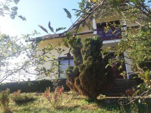 Casa Irina, Vily  Piatra Neamţ - big - 16