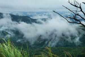 Misty Mountain Plantation Resort, Hotels  Pīrmed - big - 5