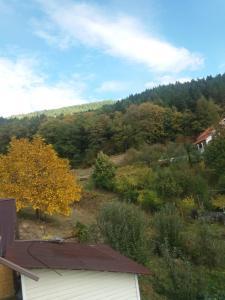 Casa Irina, Ville  Piatra Neamţ - big - 37