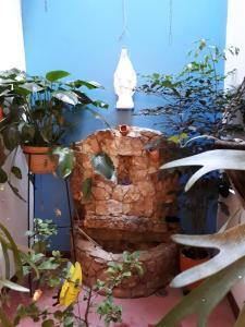SanTonio Casa Hostal, Penzióny  Cali - big - 62