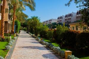 Private Apartments in Nubia Aqua Beach Resort, Appartamenti  Hurghada - big - 13