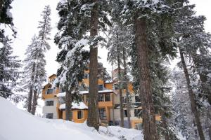 The Rosewood, Hotels  Tangmarg - big - 17