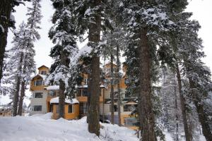 The Rosewood, Hotels  Tangmarg - big - 11