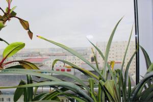 Апартаменты На Кедровой - фото 21