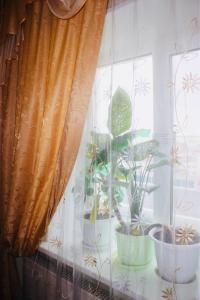 Апартаменты На Кедровой - фото 2