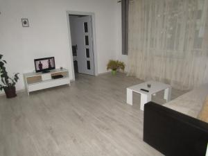 Gina Apartament, Apartments  Sibiu - big - 4