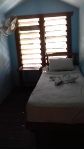 Roatan Backpackers' Hostel, Hostelek  Sandy Bay - big - 64