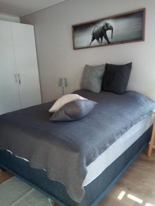 Tribal Concept, Apartments  Cape Town - big - 5
