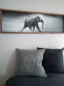 Tribal Concept, Apartments  Cape Town - big - 13