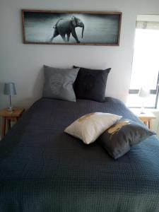 Tribal Concept, Apartments  Cape Town - big - 8
