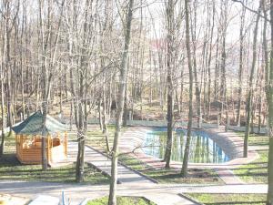 Mochary, Szállodák  Bohorodcsani - big - 36