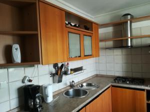 APARTAMENT CALEA VICTORIEI (BISERICA ALBA), Apartmanok  Bukarest - big - 11