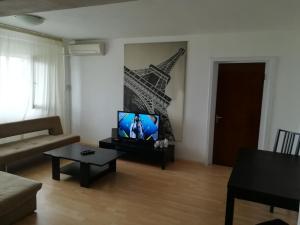 APARTAMENT CALEA VICTORIEI (BISERICA ALBA), Apartmanok  Bukarest - big - 12