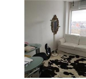 Beautiful 3 bedrooms, 2 bath in Brussels
