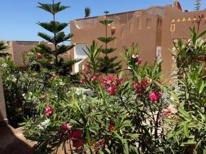 Dari, Villas  Sidi Ifni - big - 5