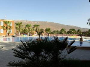 Dari, Villas  Sidi Ifni - big - 11