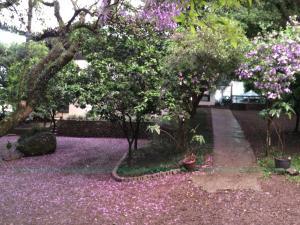 Hotel Villa Deifiori, Отели  Bento Gonçalves - big - 33