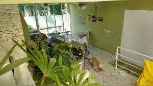 B&B Jardim dos Girassois, Отели типа «постель и завтрак»  Флорианополис - big - 35