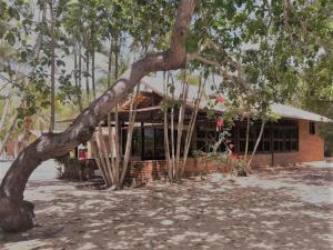 Armonia Lagoa Paraiso, Guest houses  Jijoca de Jericoacoara - big - 35
