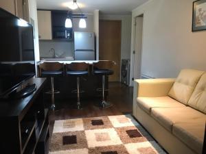 Departamento Vicuña Mackenna, Appartamenti  Santiago - big - 7