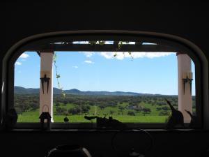 Dream of Alentejo, Nyaralók  Montemor-o-Novo - big - 61