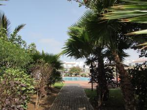 Private Penthouse Apartment Dunas Resort, Apartmanok  Santa Maria - big - 5