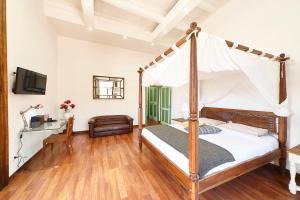 Anemone Apartment
