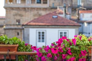 Casa Celsa-Barbantes, Affittacamere  Santiago di Compostela - big - 6