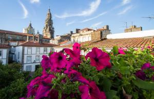 Casa Celsa-Barbantes, Affittacamere  Santiago di Compostela - big - 5