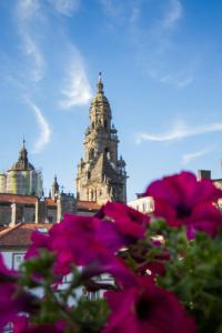 Casa Celsa-Barbantes, Affittacamere  Santiago di Compostela - big - 4