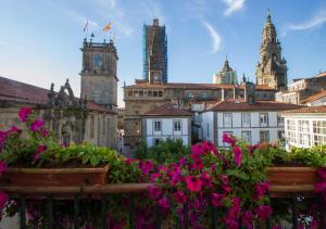 Casa Celsa-Barbantes, Affittacamere  Santiago di Compostela - big - 3