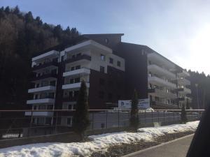 Izvorul Dorului 3, Апартаменты  Синая - big - 12