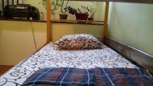 obrázek - Uley Hostel