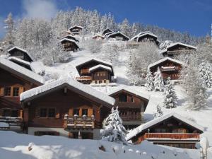 Chalet Etoile, Alpesi faházak  Grimentz - big - 11